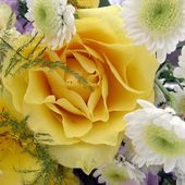 Yellow rose in bouquet