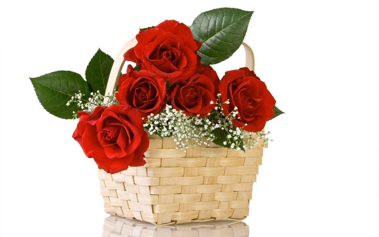 A basket of red roses