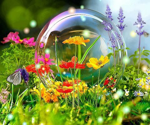 Spring flowers through a soap bubble