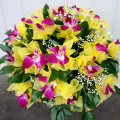 Bight and colorful orchid bouquet!