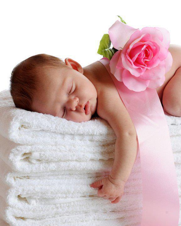 Adorable Baby and a Rose