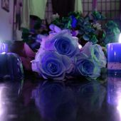 Blue roses on a table