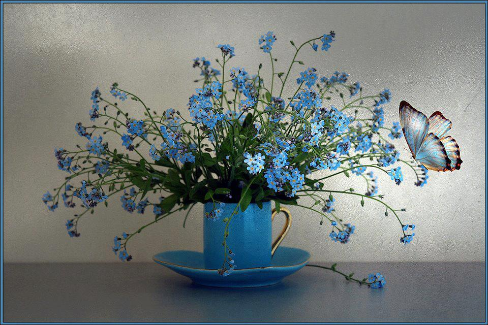 A cup of blue flowers