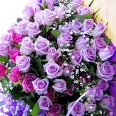 A huge bouquet of purple roses