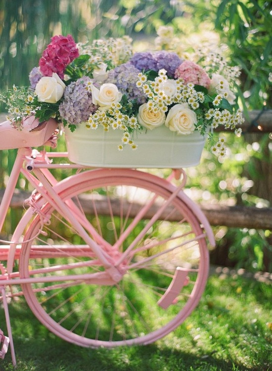 Pink bicycle and beautiful flowers
