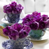 Petty purple tulip arrangements
