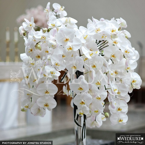 White orchid table centerpiece