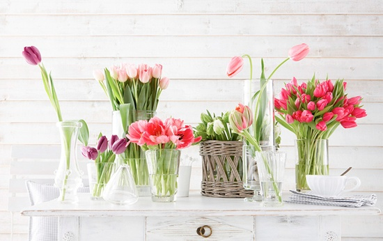 Bunches of spring tulips