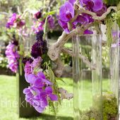 Orchids, branches and glassware...