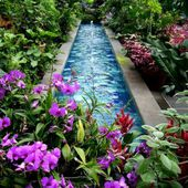Great fountain surrounded by orchids