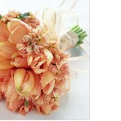 Magnificent bouquet of peach French tulips