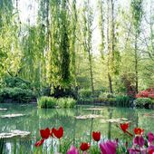 Monet's Garden, Giverny Village, France