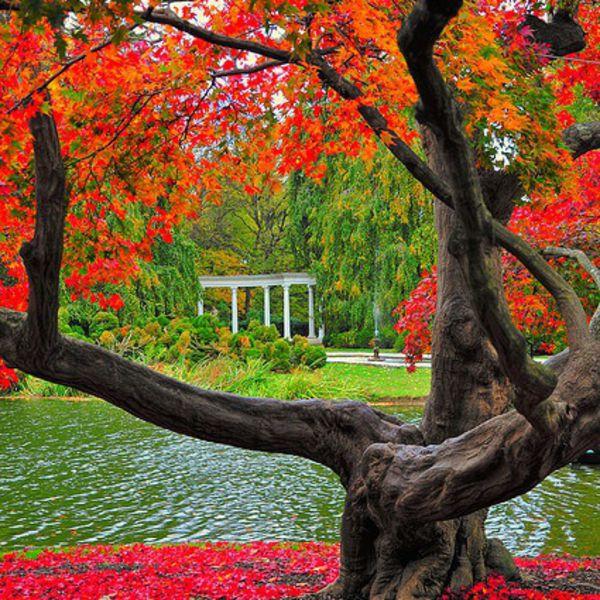 Old Westbury Gardens Long Island: Autumn, Old Westbury Gardens, Long Island