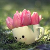 A cup of pink tulips