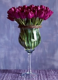 A glass of tulips
