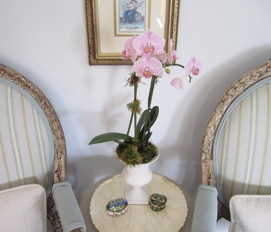 Pink orchid centerpiece