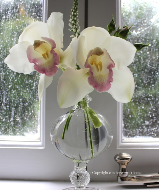 Two orchids on a windowsill