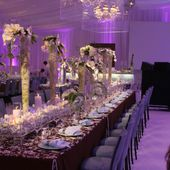 David Tutera Wedding
