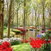 Kukenoff Garden, The Netherlands
