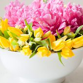 Tulips and Peonies