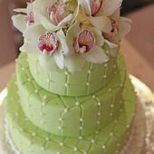 Pale green cake with orchids