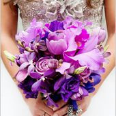 Purple orchids with exotic fill