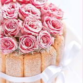Candied rose cake