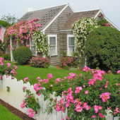 Cute Cottage and Rose Garden