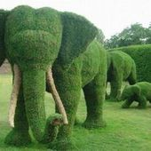 Elephant Grass Sculpture