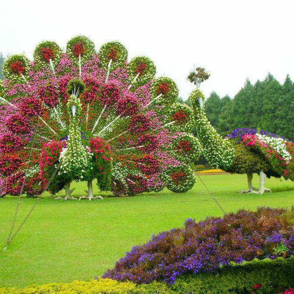 Цветы фото дизайн