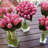 Bouquets of pink tulips