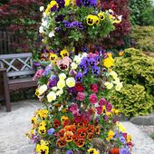 Pansy tower