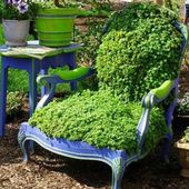 An armchair planter