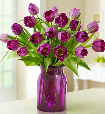 Purple tulips in a purple vase