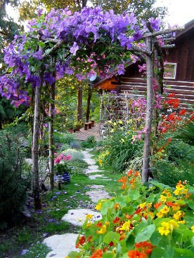 Backyard Flower Garden