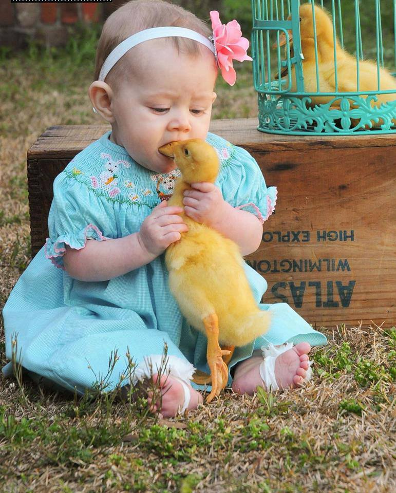 Cute Baby Tries to Eat a Duck