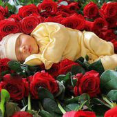 Cute baby in red roses
