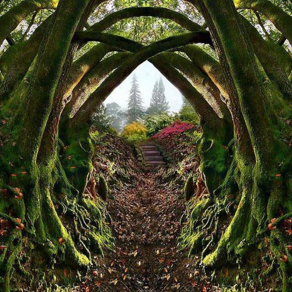 Entrance To Portland Rose Gardens : Entrance to the secret garden portland oregon