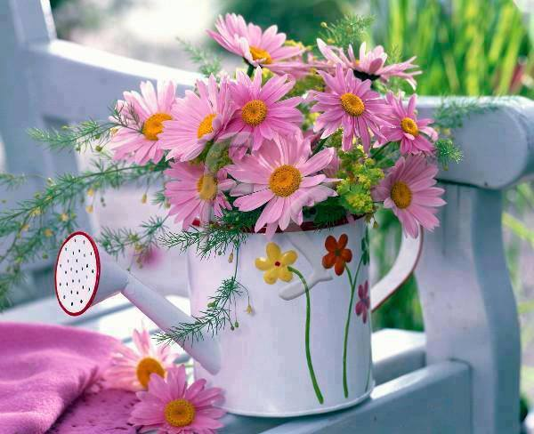 Pink flowers in watering can