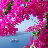 Sea, ship and flowers