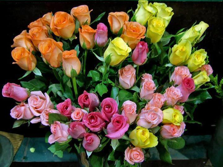 Bunch of colorful fresh roses
