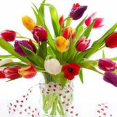 Colorful tulip bouquet