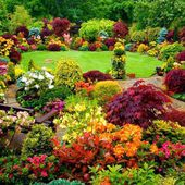Amazing Flower Garden Idea