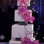 Purple Orchids on White Squared Cake Tiers