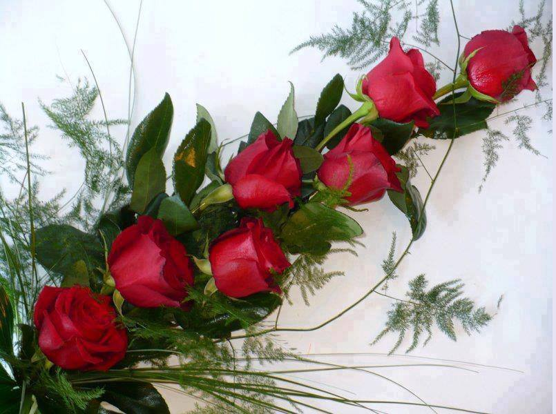 Bunch of Red Rose
