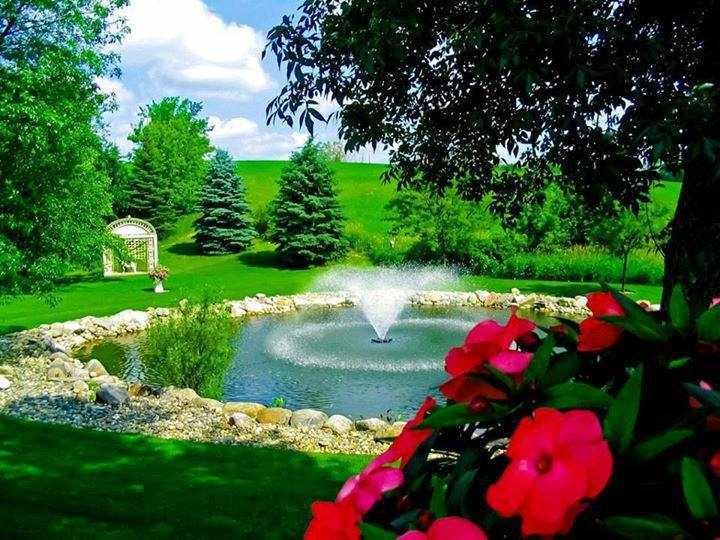 Beautiful pond