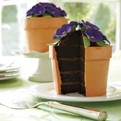 Flowerpot of violets cake, all edible