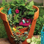 Birdhouse Mini Garden