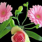 Pink Gerberas and Rose