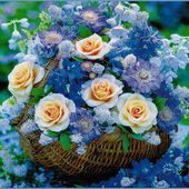 Pretty flowers in a basket